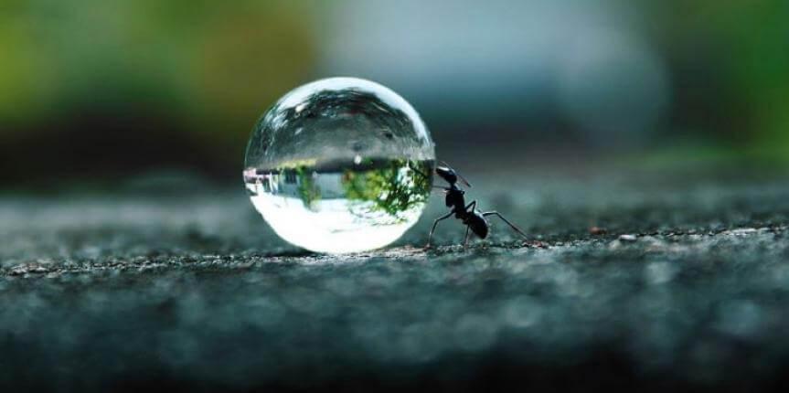 persistencia y perseverancia